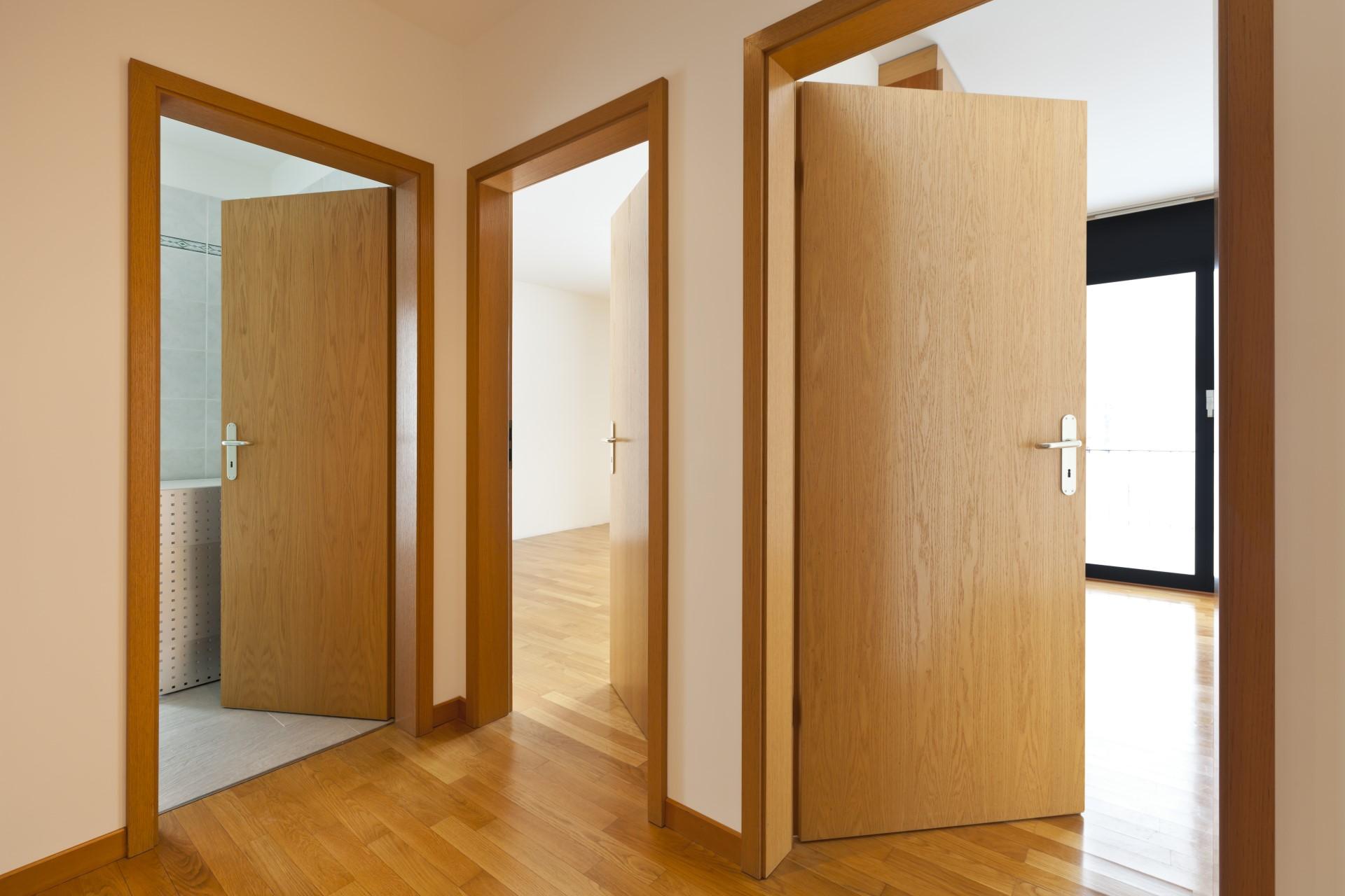 Межкомнатные двери из экошпона: фото, материал, плюсы и минусы
