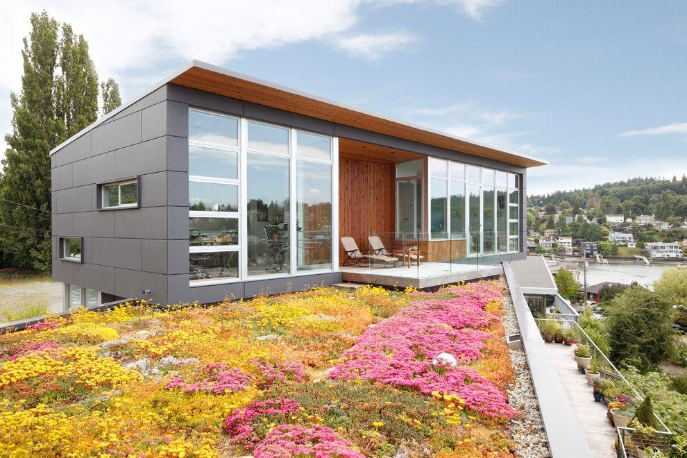 Одноэтажные дома: особенности проектов и готовые решения